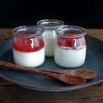 """*Joghurt und Kefir selbermachen mit """"YO*GUT"""""""