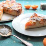 Aprikosen-Mandelkuchen